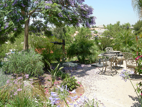 Patio And Garden Contractor San Diego