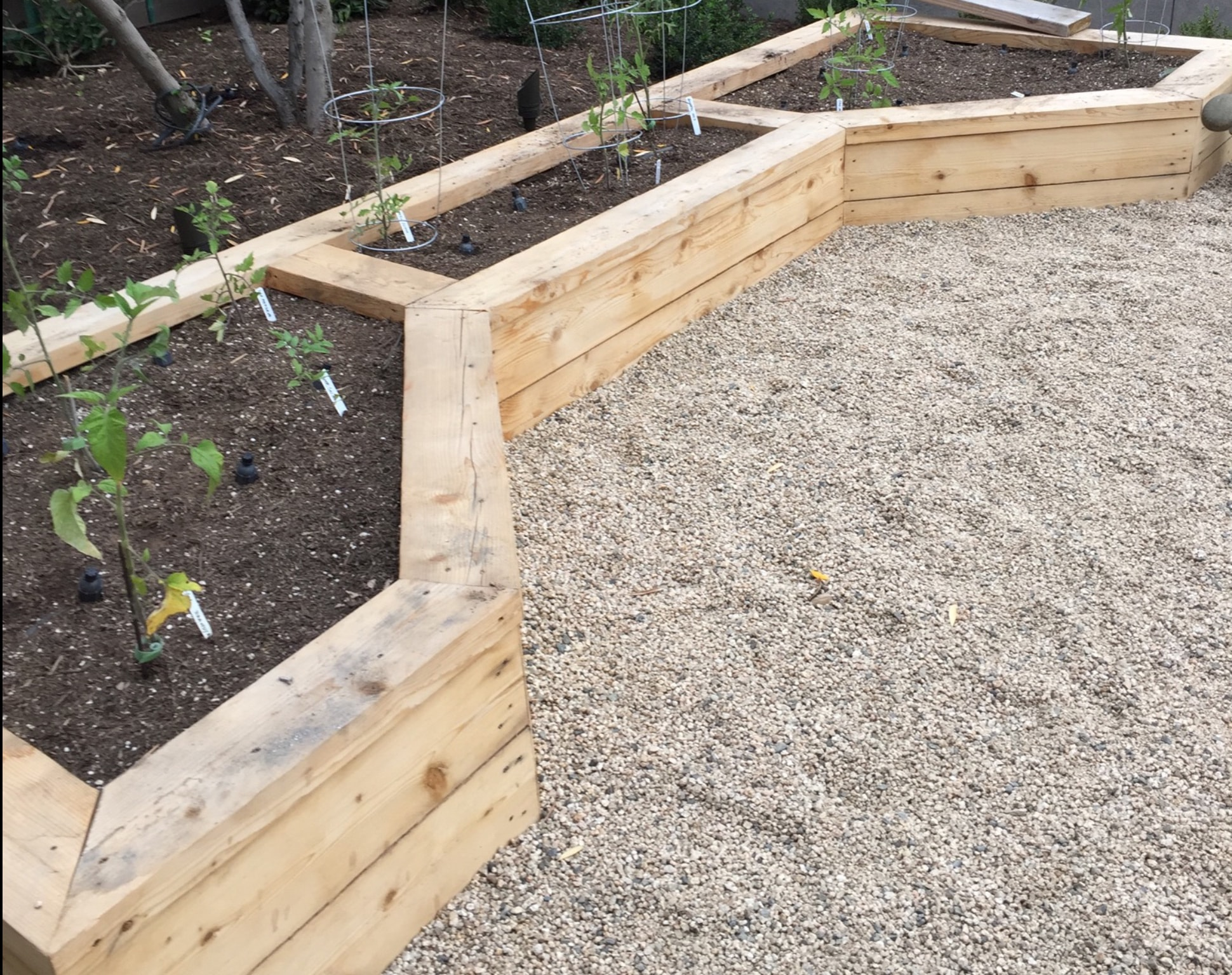 Edible Gardens Installer San Diego