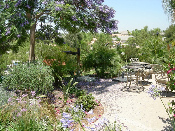 Best Landscape Contractor San Diego