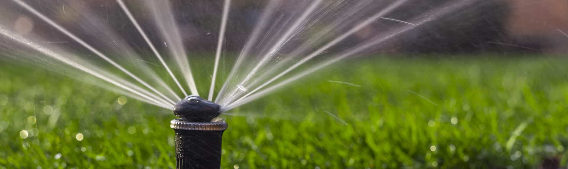 Irrigation System San Diego